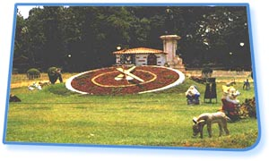 Lalbagh Garden - Bangalore